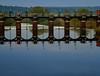 Weir...d (Chris Willis 10) Tags: bridge reflection simon reflecting walk acton weir sait actonbridge simonsait ilobsterit