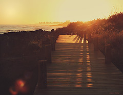(nina's clicks) Tags: road wood sunset beach fence atardecer mar madera camino puntadeleste hff