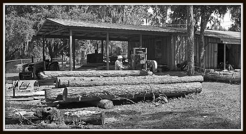 one man sawmill