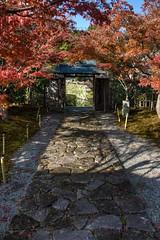 Maple Exit (JapanDave) Tags: japan momiji styles aichi okazaki hdr