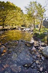 Riviere 4 (Little Boy 09) Tags: fish eye water les trois creek montagne automne canon river eos la eau riviere fisheye 8mm ariege rabat 500d ruisseau seigneurs samyang freyte