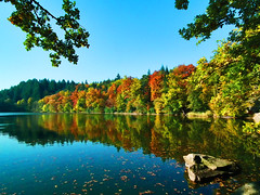 Herbst am Bergsee (mike_tec) Tags: autumn herbst bergsee badsckingen