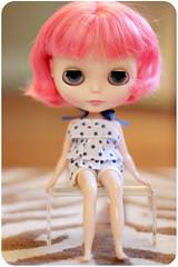 219/365: lolli sits pretty