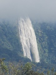 . (Nelson Luiz Wendel) Tags: brazil brasil mar waterfall rainforest do wasserfall air maji talon tropical slap serra foss juga cascade floresta cachoeira ya terjun ecoturismo   cascada joinville  cascata vesiputous eas waterval  rhaeadr fervenza vattenfall vodopd elale wodospad  urjauzia vandfald itapocu   vodopad nc vzess thc ecossistema krioklys maporomoko mata atlntica denskritums lal   ujvar    regenvaldt regenwaldt    catarracta  kaskad