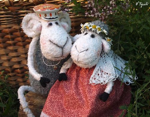Sheeps12