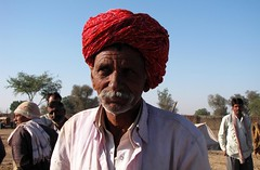 Seller at Nagaur Cattle Fair