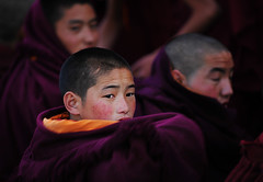 Little Monk ( DocBudie) Tags: portrait people children candid monk human debate humaninterest tibetanmonks childrenportrait redrobe humanlife littlemonk debatingmonk monkdebate peopleactivity humaninterestphotography photocandid tibetanbuddhistmonksdailydebate tibetanbuddhistmonksdebate