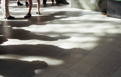 shadows collide with people (Heisenberg Y) Tags: shadow people ombra trainstation analogue stazione yashica