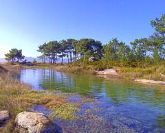 Illa de Arousa - Isla de Arosa - Arousa Island (Luis Diaz Devesa) Tags: espaa naturaleza beach nature landscape mar spain agua rboles europa europe playa paisaje galicia galiza pontevedra naturalpark illadearousa isladearosa carreirn luisdiazdevesa natureofcarreirn