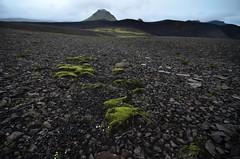 Hattfell from Markarfljòtsgljùfur (supersky77) Tags: island iceland laugavegur islanda emstrur botnar hattfell markarfljòtsgljùfur