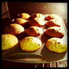 Designing websites, making muffins...all in a days work.