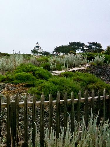 1106-SF&Monterey-2634