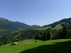 alpen fields