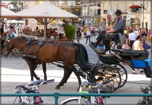 Vienna Street Scene by Ginas Pics