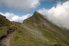 (Leer0y) Tags: nikon path romania montain carpati carpathianmountains d80