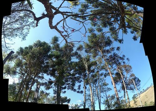 Panorama Mauá