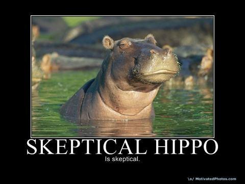 skepticalhippo