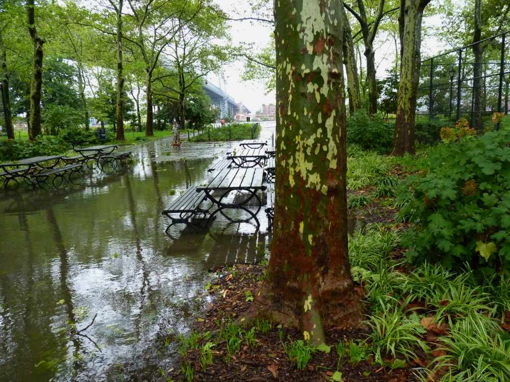 East River Park Flooding 2