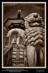 Peace Pagoda, Milton Keynes (thpeter) Tags: uk england europe miltonkeynes gmt peacepagoda gbr dst 2011 thomaspeter thpeter