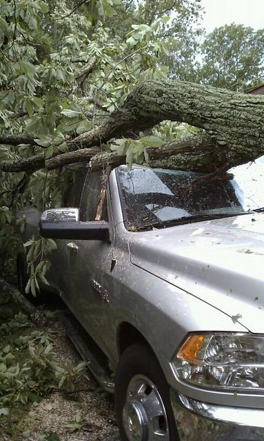 tree crazy oak accident dodge ram diamondback dr09 hdcabguard lightgrayorsilvertruck passengersideheadlightview