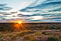 North Yorkshire Moors Sunset (mark_mullen) Tags: sunset landscape dusk heather northyorkshire moorland canon1ds egtonbridge northyorkshiremoors 24105f4is reversegrad markmullen markmullenphotography