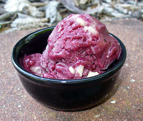 2011-09-02 - Banana Blueberry Ice Cream - 0025