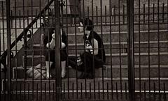Talking behind bars (ThePatronSaint) Tags: summer portrait people urban woman man love brooklyn fun blackwhite shadows parks streetphotography streetphoto jackman streetportraits rcj everydaymoments thepatronsaint beststreetphoto rawlecjackman 2011rawlecjackman newyorknycartthemomentcapturednikon