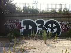 D30 'We Ball. You Fall' (billy craven) Tags: chicago graffiti mayor d30 wyse