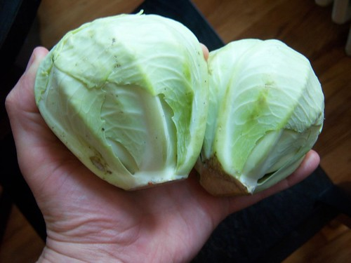 Two Tiny Cabbages