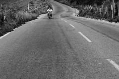 (radiopinkfloyd) Tags: road street travel blackandwhite bw canada man guy bike canon photography eos pavement montreal venezuela streetphotography documentary merida online motorcycle biker motor portfolio eportfolio myportfolio 60d photographywebsite canoneos60d radiopinkfloyd wwwradiopinkfloydcom radiopinkfloydcom