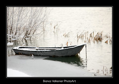 BVF171210-2580 (Bianca Valkenier PhotoArt) Tags: winter sneeuw nederland natuur bootje winters landschap kou waal koud gelderland sneeuwvlokken rivier dodewaard betuwe seizoen winterlandschap roeiboot sfeervol winterweer sneeuwoverlast