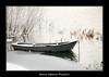 BVF171210-2580 (Bianca Valkenier Photography) Tags: winter sneeuw nederland natuur bootje winters landschap kou waal koud gelderland sneeuwvlokken rivier dodewaard betuwe seizoen winterlandschap roeiboot sfeervol winterweer sneeuwoverlast