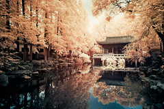 (d3sign) Tags: 3 reflection tree water architecture garden ir pond sony chinese infrared eastern nex nex3