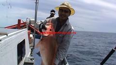 20100609 (fymac@live.com) Tags: mackerel fishing redsnapper shimano pancing angling daiwa tenggiri sarawaktourism sarawakfishing malaysiafishing borneotour malaysiaangling jiggingmaster
