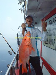 201107311 (fymac@live.com) Tags: mackerel fishing redsnapper shimano pancing angling daiwa tenggiri sarawaktourism sarawakfishing malaysiafishing borneotour malaysiaangling jiggingmaster