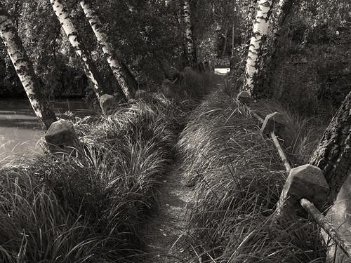 Steg by Fotosilber