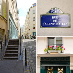 Rue de l'Agent Bailly (Bee.girl) Tags: street paris france stairs rue 2011 75009