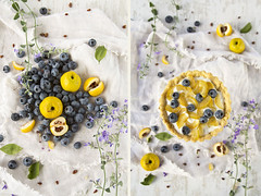 Diptych (Tasty food and photography) Tags: food cake dessert essen tasty delicious blueberry homemade creamy mascarpone flavorful chaenomeles tastyfood homemadefood foodphotograph homemadedessert hausgemachte foodstylingidea