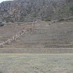 "Terraces <a style=""margin-left:10px; font-size:0.8em;"" href=""http://www.flickr.com/photos/14315427@N00/6128084216/"" target=""_blank"">@flickr</a>"