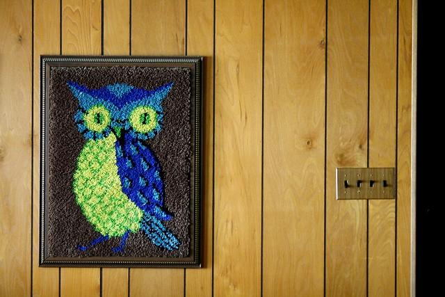 LD owl