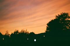 yawny at the apocalypse (klausfish) Tags: light sunset orange film 35mm newfoundland portra