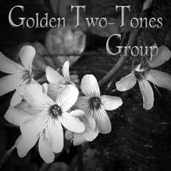golden_ two_tones
