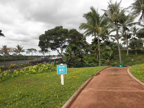 WAIKELE COUNTRY CLUB 080