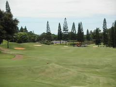 WAIKELE COUNTRY CLUB 235