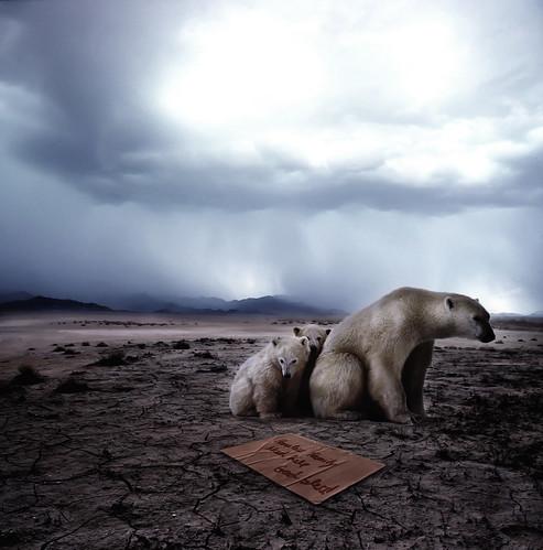 フリー写真素材, グラフィックス, フォトアート, 動物, 哺乳類, 熊・クマ, ホッキョクグマ・シロクマ, 家族・親子(動物),