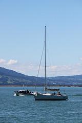 Bodensee (Ute Lochner) Tags: strand boot see wasser sommer urlaub alpen bodensee schiff fhre segelboot