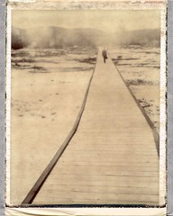 Steamy visions (Bastiank80) Tags: park old wild usa hot west polaroid holidays chocolate basin steam 180 biscuit national yellowstone 100 geyser expired choco boiling faithful landcamera polanoid
