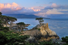 Only The Lonely - Monterey Cypress (Explore) (Darvin Atkeson) Tags: ocean california desktop sunset wallpaper seascape beach golf landscape drive monterey pacific background central bigsur coastal shore carmel pebblebeach lone 17 cypress mile darvin atkeson darv liquidmoonlightcom