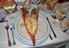Langosta (rsaezn) Tags: lobster dominicana iberostar puntacana caribe langosta bavaro repblicadominicana langouste bavarobeach crustaceos bvaro iberostarbavaro playabvaro hoteliberostarbavaro dominacanrepublic