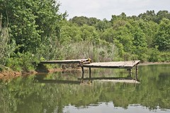 Cat broken pier.jpg (corvar) Tags: road city trip travel bridge blue camping sunset lake sexy art history cars abandoned oklahoma nature girl field museum sunrise vintage naked waterfall rainbow buffalo route66 rust automobile cowboy clinton indian phillips kitsch totem mater gasstation dirt missouri oil kansas ghosttown americana whale arkansas antiques studebaker tulsa teepee spencer plains outhouse wichita spa luxury carthage joplin hotsprings packard mountainman claremore galena gilcrease motherroad chisolm woolaroc catoosa galoway wylan